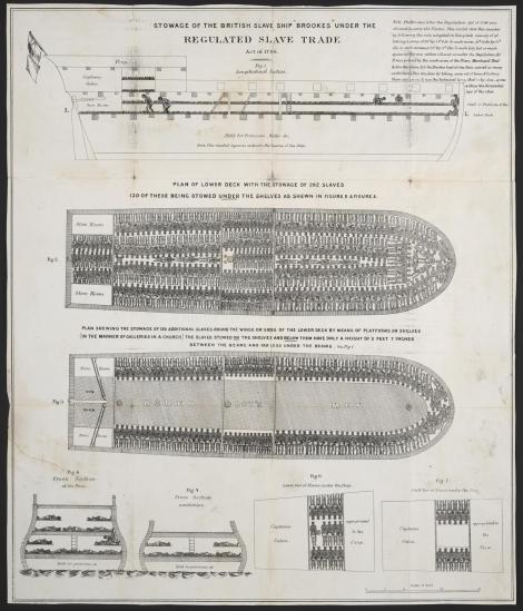 """תרשים """"אחסון"""" העבדים על הספינה Brookes"""